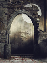 Stary Mur W Lesie Na Tle Księżyca