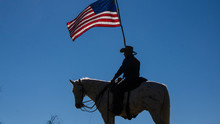 Man On Horse For Veteran's Day