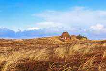 Traditional Danish House In The Dunes