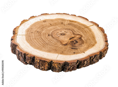 Fotografie, Obraz  cracked tree trunk cross section with annual rings close-up isolated on white ba