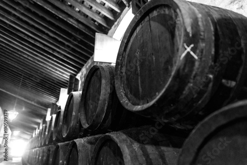 Fotografiet Barrels for wine stacked in the cellar