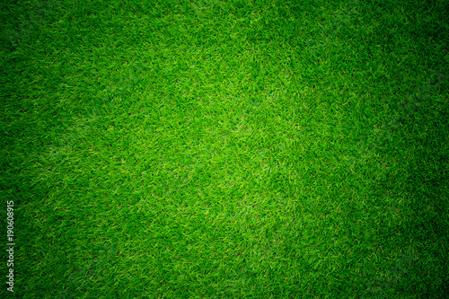 Foto auf Gartenposter Gras grass field background. green grass. green background