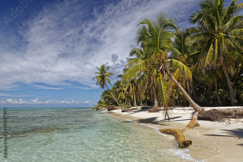 Carribean, Dominican Republic, beach on the Caribbean Island Isla Saona