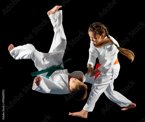 Fotografie, Obraz  Children martial arts fighters