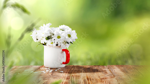 Fototapety, obrazy: table background and spring time