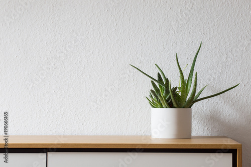 Modern living, succulent on sideboard Canvas-taulu