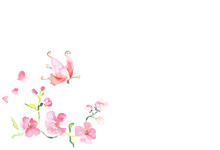 Frame From Pink Flowers And Bu...