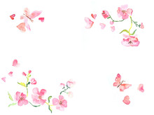 Horizontal Frame From Pink Flowers And Butterfly Watercolor Illustration With Space For Text, Valentines Day