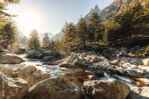 Fotografie, Obraz  Waterfalls and boulders at Restonica in the mountains of Corsica