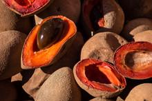 Sapote Mamey : Fruit D'Amérique Centrale