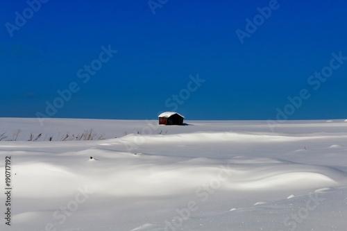 Fotografie, Obraz  雪原の廃屋