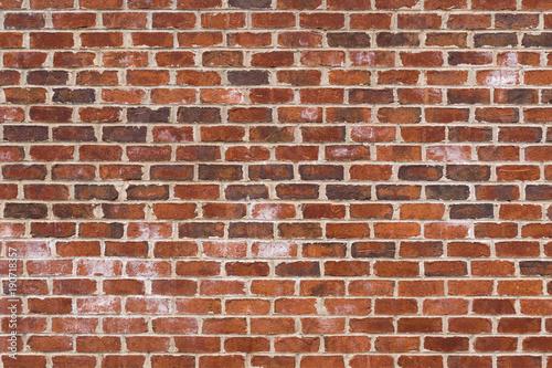 Garden Poster Brick wall Red Brick Wall Background Pattern