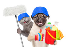 Cleaning Concept. Cat And Dog In Blue Hats Holds Bucket With Washing Fluids And Mop In Paw And Showing Thumbs Up. Isolated On White Background