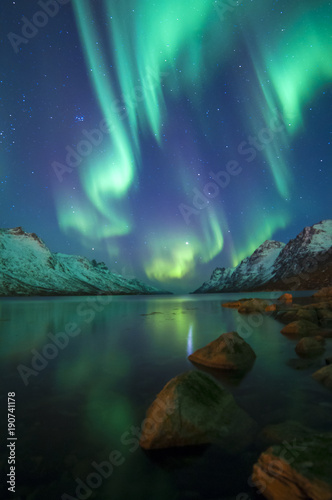 Poster Aurore polaire The polar lights in Norway . Ersfjord. Tromso