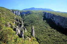 View In Vela Draga Nature, Ist...
