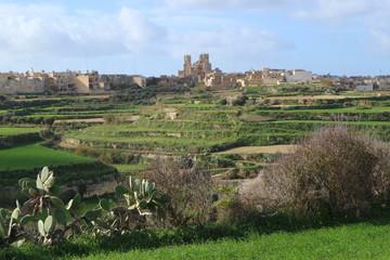 Fototapeta na wymiar Spring view of Gozo island, Malta