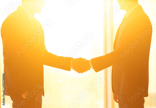 Fotomural The two businessmen handshake on the bright sun background