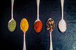 Gewürze auf Löffeln - Salz, Pfeffer, Paprika, Curry, Rosmarin