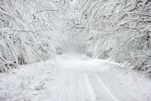 Road Covered In Heavy Snow Through A Wood
