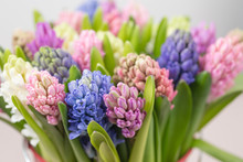 Hyacinth Closeup. Flower Shop ...