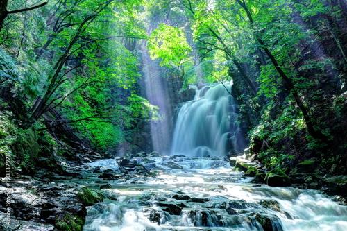 Spoed Foto op Canvas Watervallen 浅間大滝の光芒
