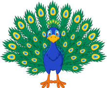 Cartoon Beautiful Peacock Isol...