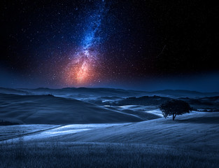 Milky way and tree on field...
