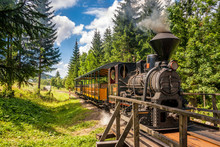 Steam Locomotive In Forest Railways From Village Vychylovka In The Kysuce Region, Slovakia, Europe.