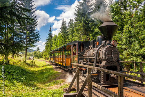 Fotomural Steam locomotive in forest railways from village Vychylovka in the Kysuce region, Slovakia, Europe