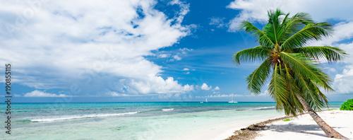 Poster Tropical beach Caribbean palm beach
