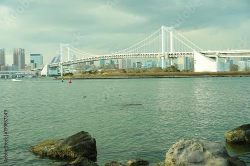Plakat Morze Odaiba