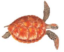 Sea Turtle Watercolor Illustration On White Background. Marine Tortoise Drawing.