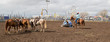 Cowboys in time medical roping event