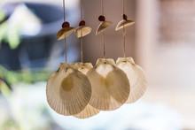 Hanging Seashells Decoration. ...