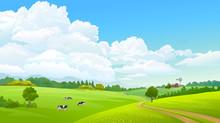 Farm Caws Grazing Green Grass