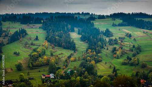 Foto op Aluminium Nachtblauw Landscape with trees at autumn in Tatra mountains, Poland