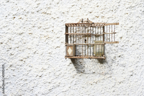 Fotografie, Obraz  jaula de pájaros antigua, abierta, fondo blanco