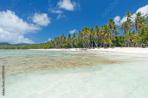 Foto op Plexiglas Caraïben Beautiful Caribbean beach on Samaná peninsula, Dominican Republic