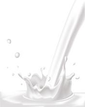 White Vector Milk Splash On White Background