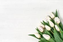 White Tulips Bouquet On White ...