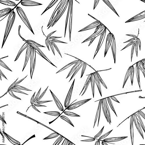 wektorowy-bezszwowy-konturu-bambusa-lisci-wzor