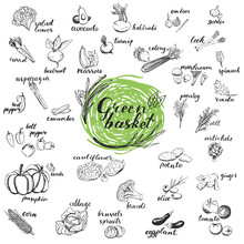 Vegetables Hand Drawn Sketches. Organic Vegetables For Menu Design Isolated On White Background. Green Basket Healthy Food Collection.