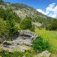 Fototapeta na wymiar Beautiful valley and blue sky in Andorra. Mountain landscape.