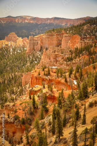 Autocollant pour porte Parc Naturel Trees and Hoodoos in Bryce Canyon Park