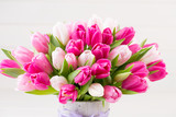 Fototapeta Tulipany - Pink tulip on the white background. Easter background
