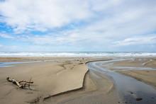 Sandy Beach, Driftwood, And Me...
