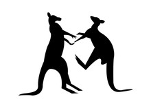 Two Kangaroos Fighting Silhoue...
