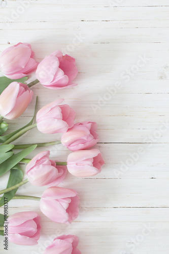 beautiful pink tulips on white wooden background