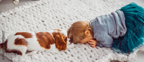 Fotografia  Little child plays with a Cavalier King Charles Spaniel on a soft blanket