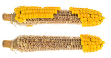 Two Partially Empty Corncobs. ...